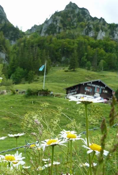 Wandern im Sommer auf die Bründlingalm in den Chiemgauer Alpen