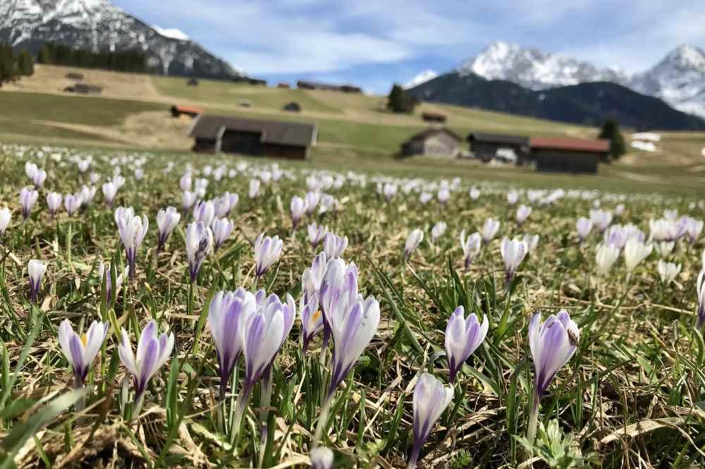 Im Frühling im Karwendel wandern
