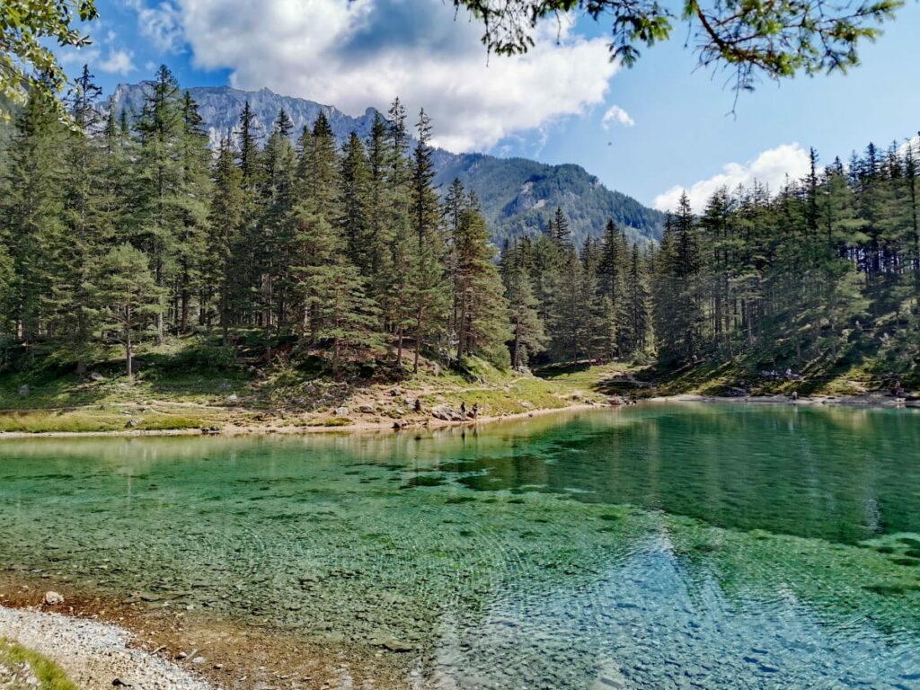 Zum schönsten Platz in Österreich wandern - Grüner See, Tragöss