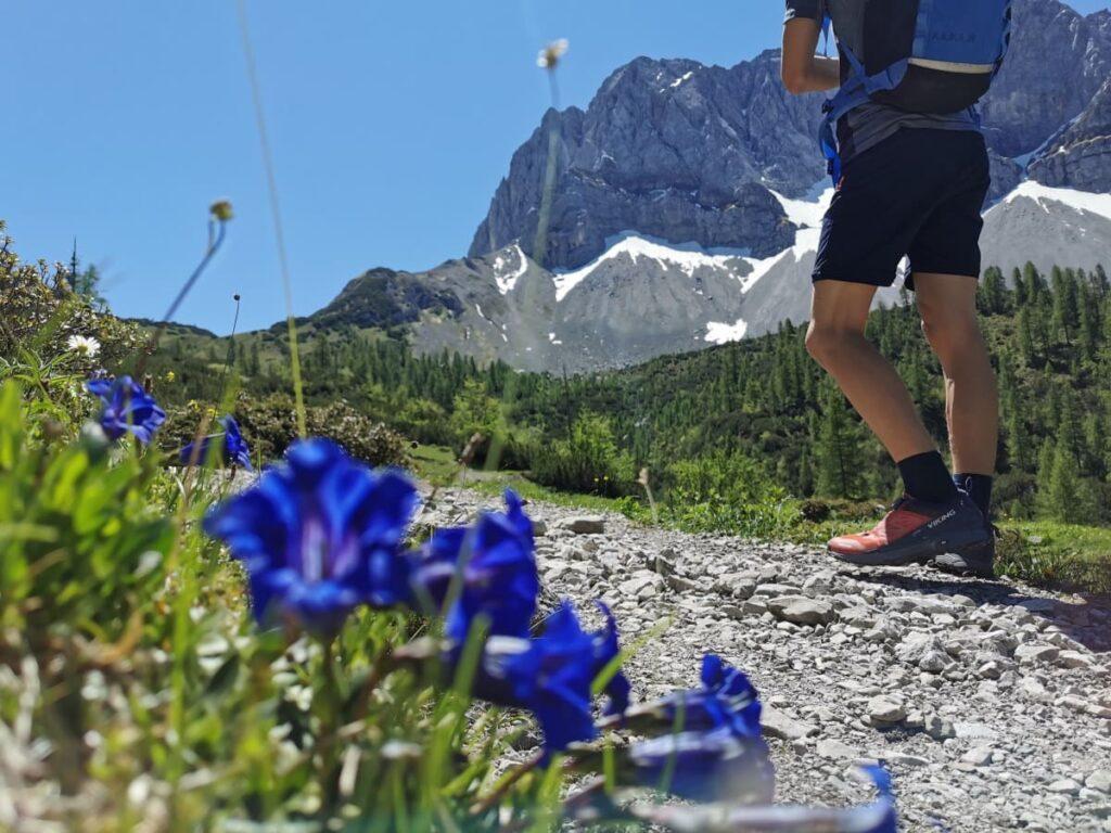 Österreich wandern de Luxe - im Karwendel