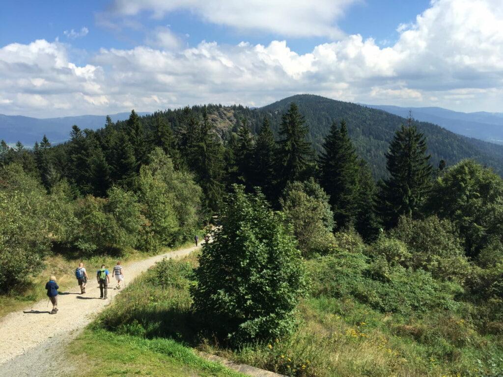 Bayerischer Wald wandern - am Kaitersberg