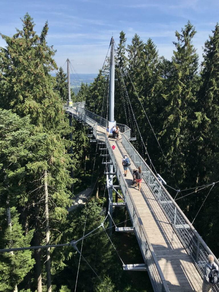 Besondere Wanderung im Sommer - Skywalk Allgäu